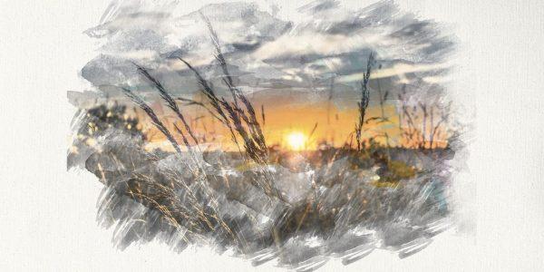 susana gonzalez sunset