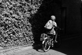 York Spring 2013 - Dividing Line