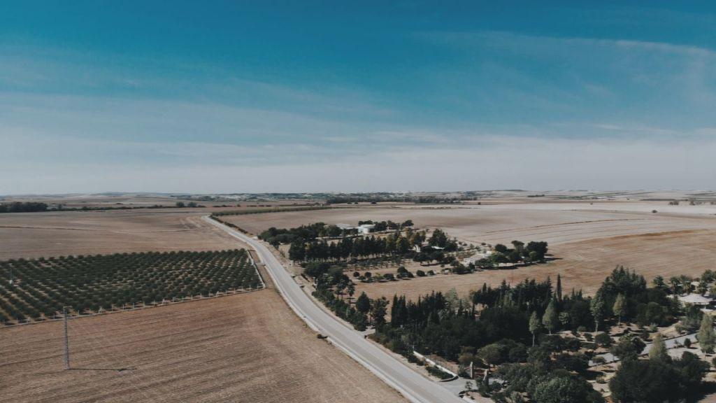 Boda en Lebrija - Sevilla