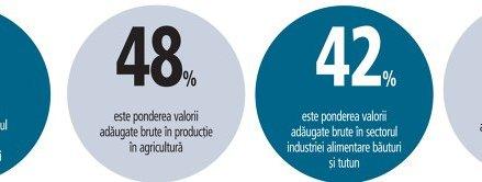 """Revenirea economiei se poate baza pe sectoarele cu o pondere mare a valorii adăugate în totalul producţiei: Informaţii şi Comunicaţii, Servicii Profesionale, Industria Alimentară şi Agricultură. """"Norocul"""" este că în industria auto valoarea adăugată este de doar 29% din producţie"""