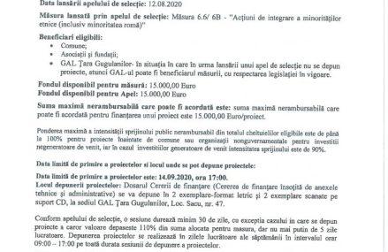 Asociatia Grupul de Actiune Locala Tara Gugulanilor anunta lansarea apelului de selectie M6.6/6B- Actiuni de integrare a minoritaților etnice (inclusiv minoritatea roma)
