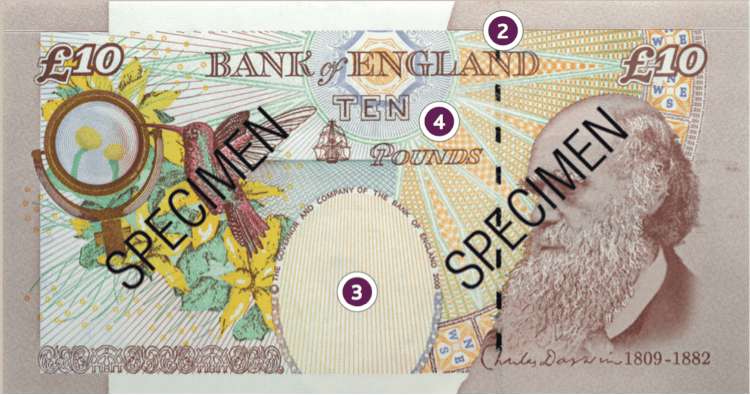world currency design