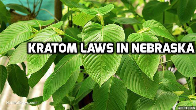 Kratom Laws In Nebraska