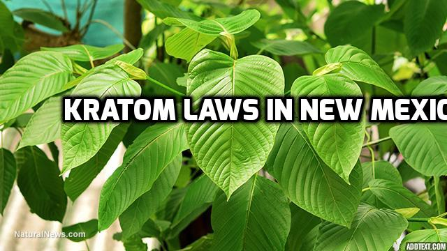 Kratom Laws In New Mexico