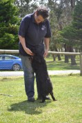 banksia-park-puppies-pruefull-27-of-36
