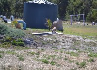 Banksia Park Puppies Playgrounds - 1 of 25 (16)