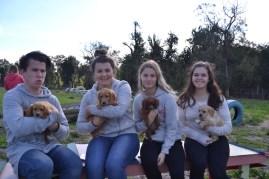 Banksia Park Puppies Animal Studies - 1 of 30 (13)