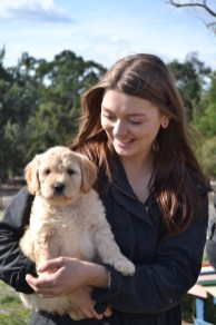 Banksia Park Puppies Animal Studies - 1 of 30 (9)