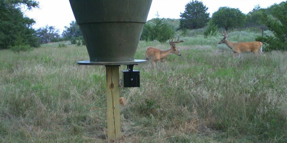 feeder images for showthread protein attached timed attachment deer forum