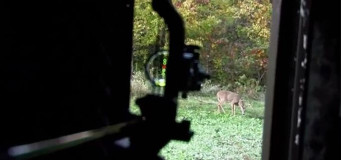 5 Advantages of Bowhunting From a Tower Blind