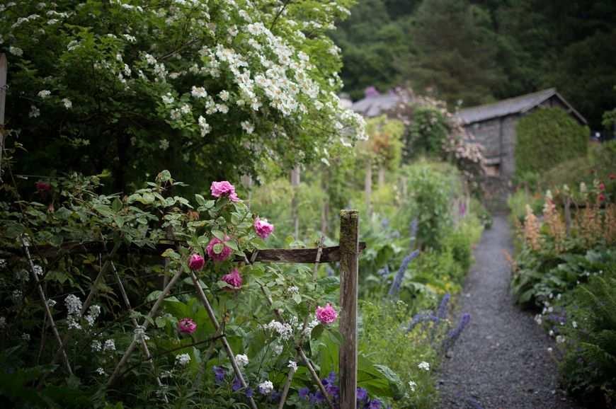 Mieć piękny ogród