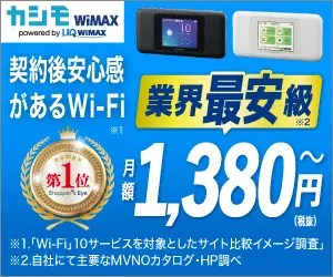 WiMAX_Wi-Fi_300 x 250のバナーデザイン
