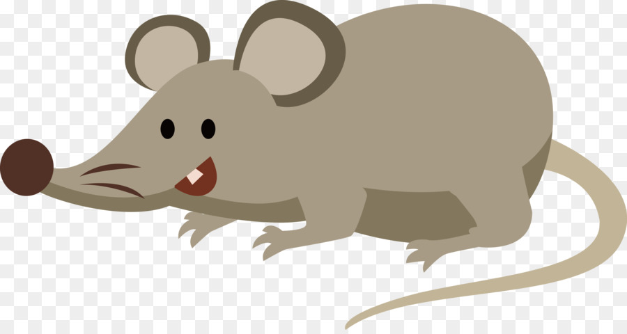 Computer Mouse Rat Drawing Vector Cartoon Mouse 4302 2265 Transprent Png Free Download Snout