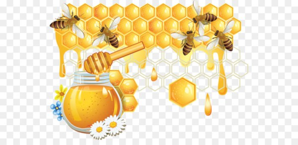 Honey bee Honeycomb Bees and honey png download 600