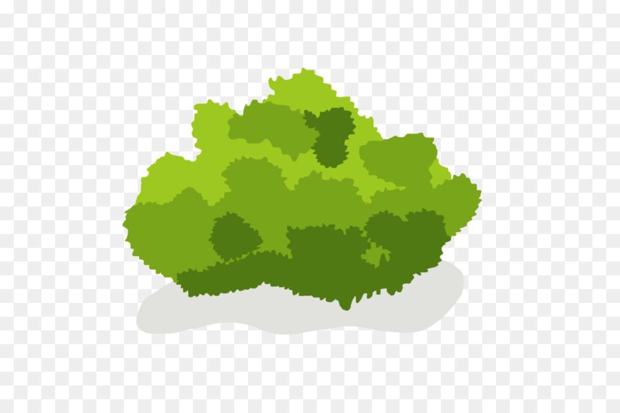 Arbusto Árbol De Dibujo Clip Art