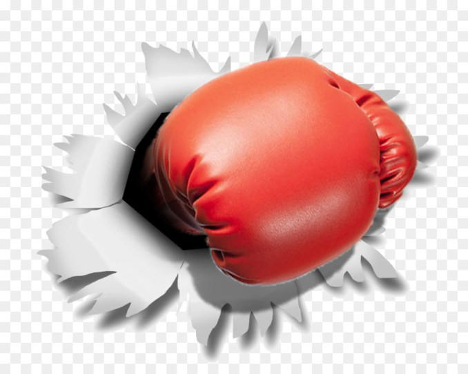 Boxing glove Punching & Training Bags - boxing gloves 1000