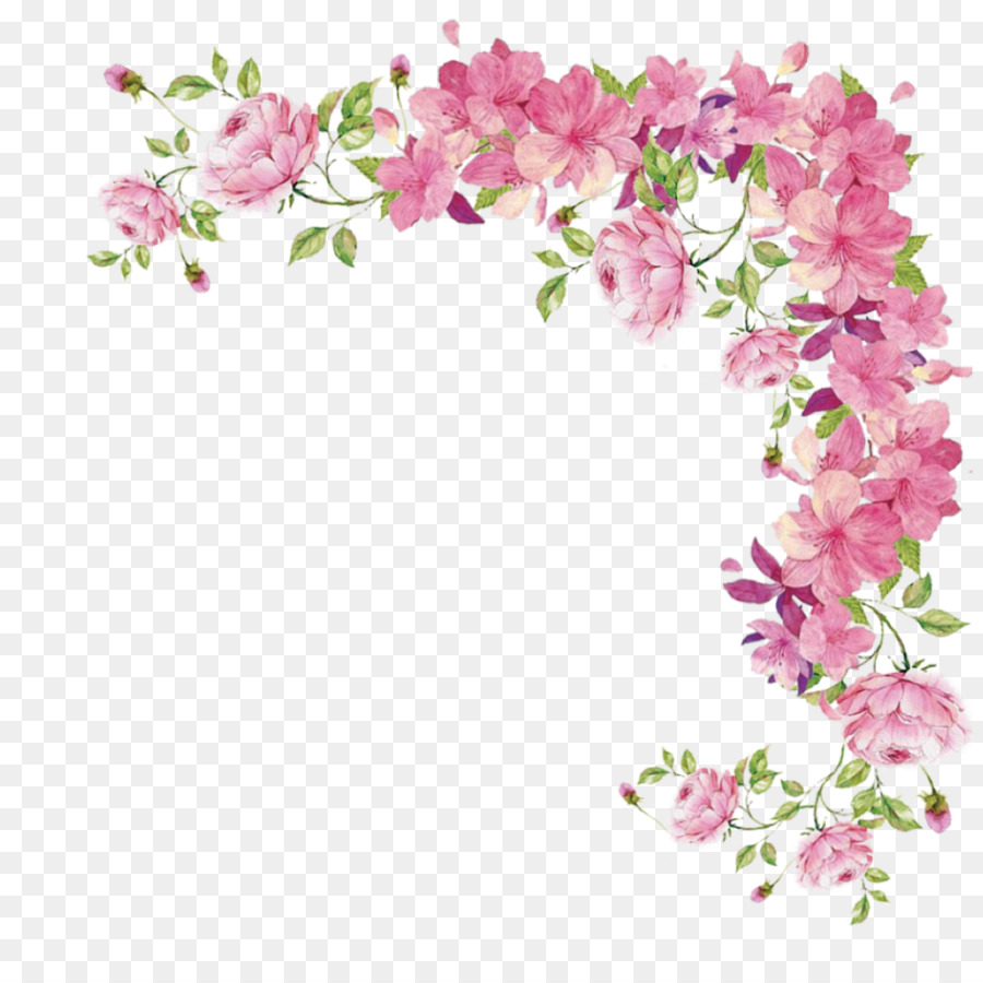 Flower Pink Flowers Rose Pink Plant Png