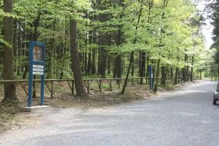 Banneux - Chemin de Croix dans la forêt