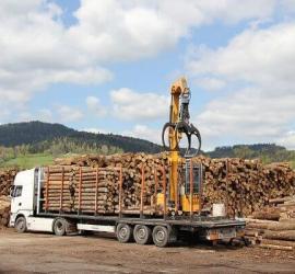 Cách vận chuyển gỗ xuất nội địa