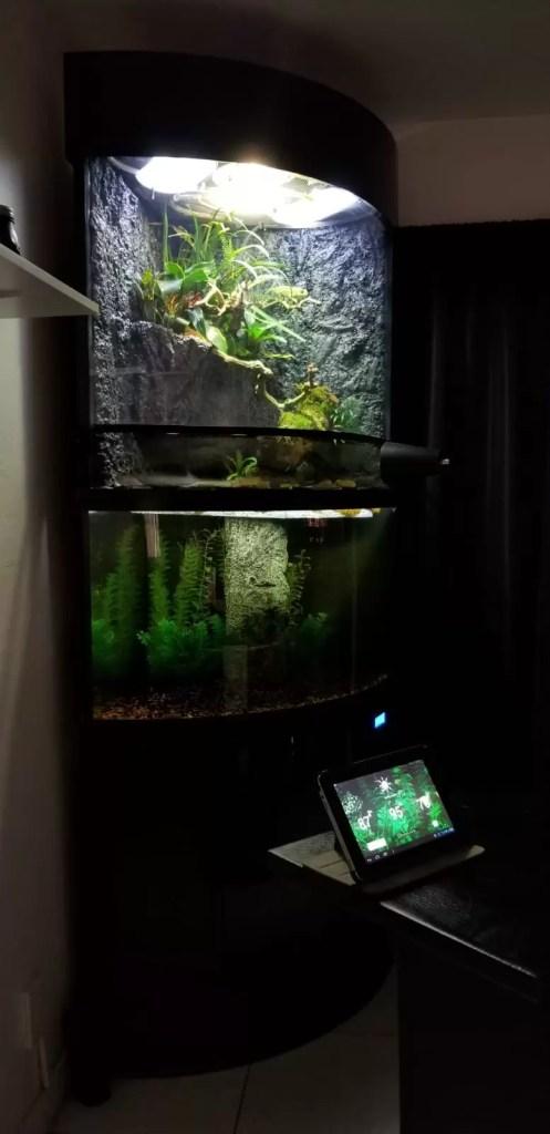 self sustaining terrarium with animals edens bow