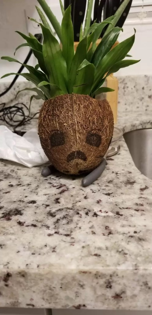 drawing face diy coconut angry baby groot