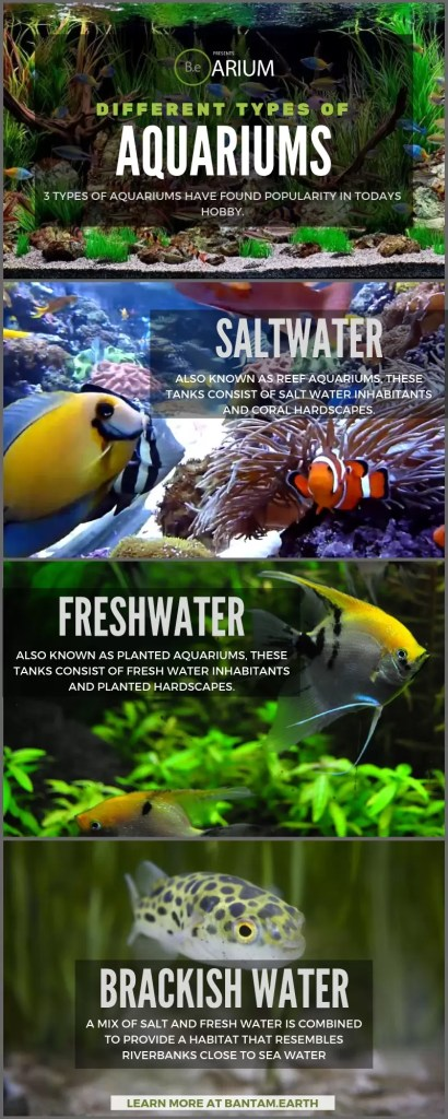 different types of aquariums