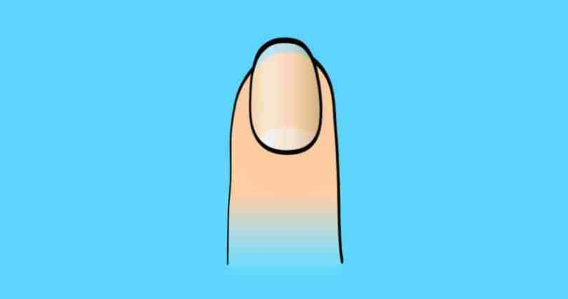 What do your fingernails reveal about your personality?