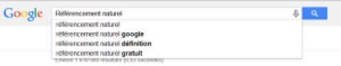 Referencement google et positionnement des sites wordpress