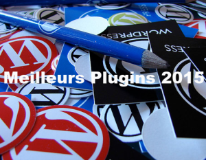 Les meilleurs plugins WordPress Buddypress 2015