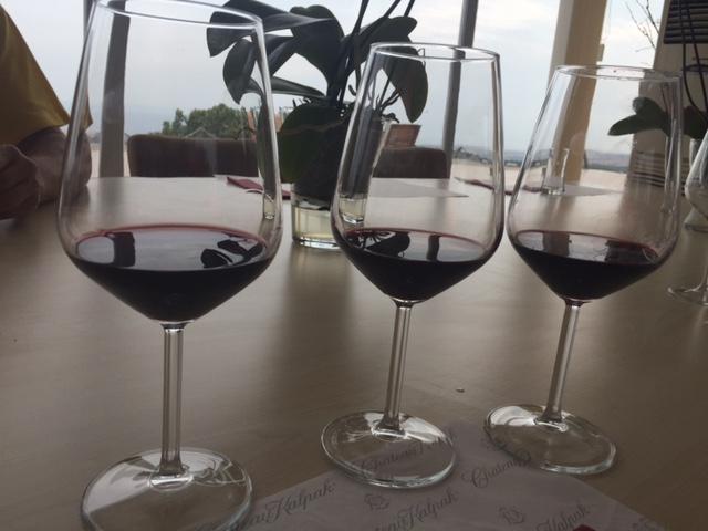 Chateau Kalpak Şarapları