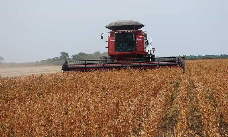 Conab: Brasil produzirá 265,9 milhões de toneladas de grãos