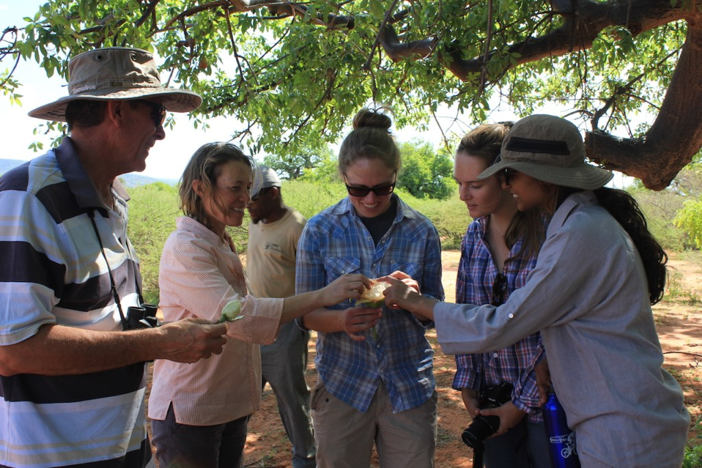BR4 Baobab Research Team