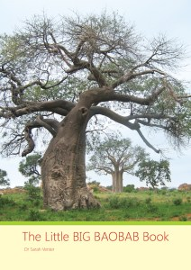 The Little BIG BAOBAB Book Cover