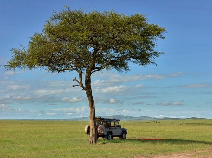 Bush Lunch in the Maasai Mara with the Ol Tome Mara Crew