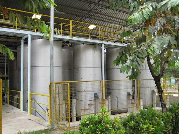Baochemicals cuida el medio ambiente