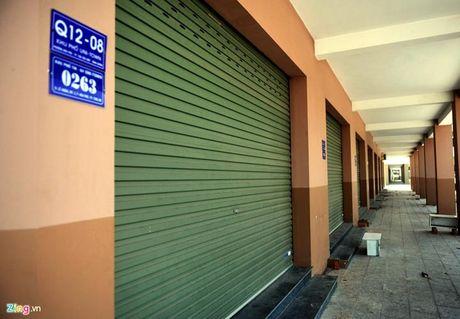 Can canh thanh pho 1.000 ha nhieu nam hoang vang o Binh Duong - Anh 8