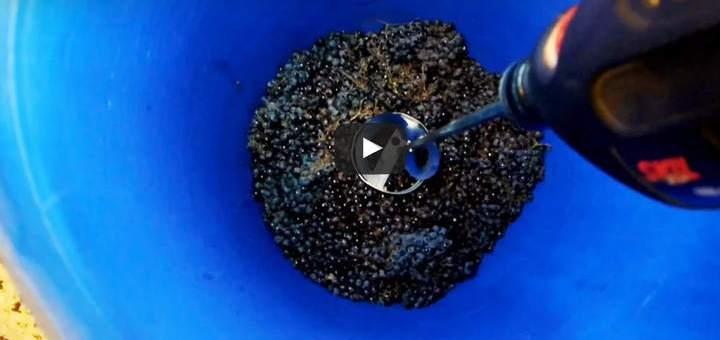 הכנת יין ביתי