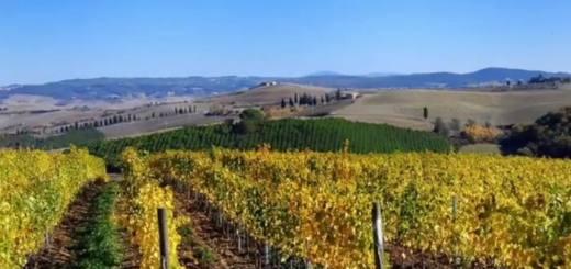 יינות סופר טוסקן