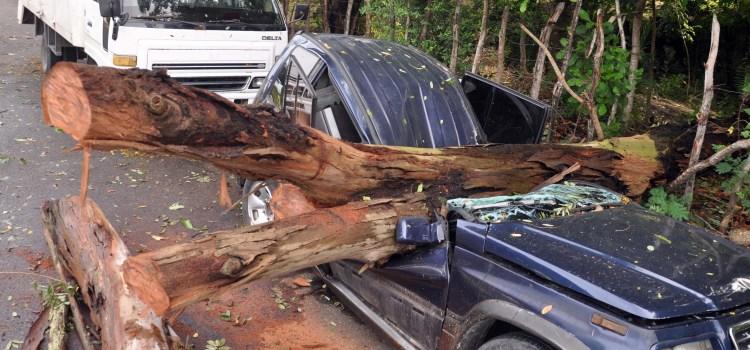 Regresan damnificados; vehículos dañados