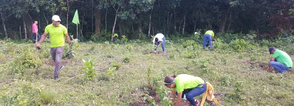 Edenorte reforesta finca comunidad SFM