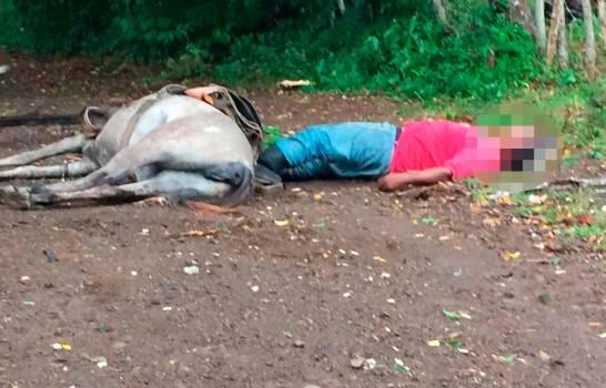 Hombre y caballo mueren al hacer contacto con un cable