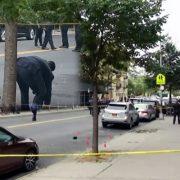 Asesinan a un hispano de varios disparos