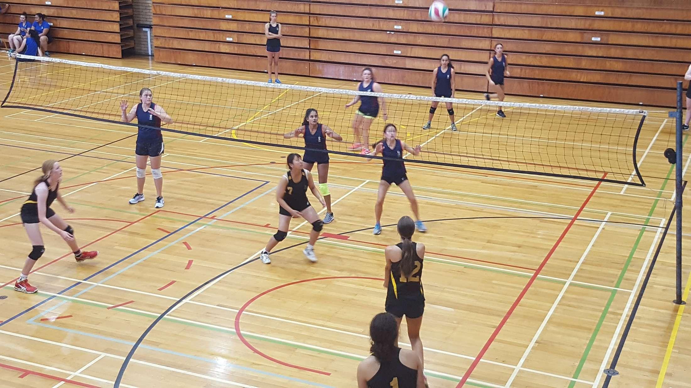 Volleyball Sports Sport Baradene College