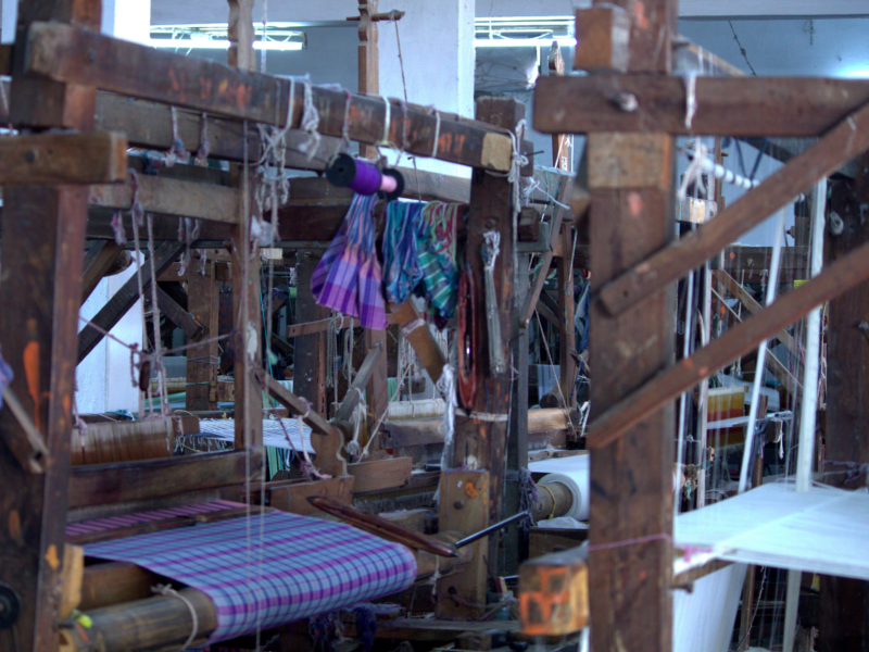 buy cotton handloom