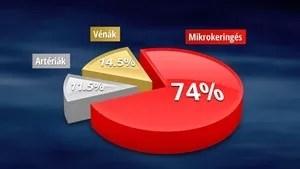 Mikrokeringés