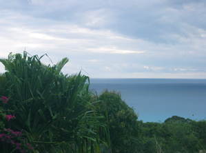 special-barbados-view.jpg