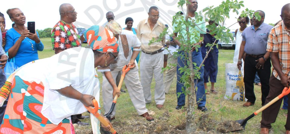 Residents urged to protect the environment