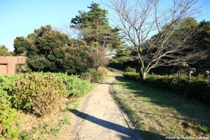 国営昭和記念公園 4
