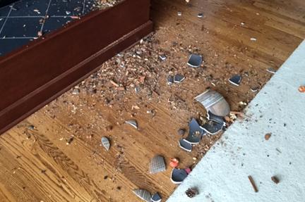 Cooper Damage