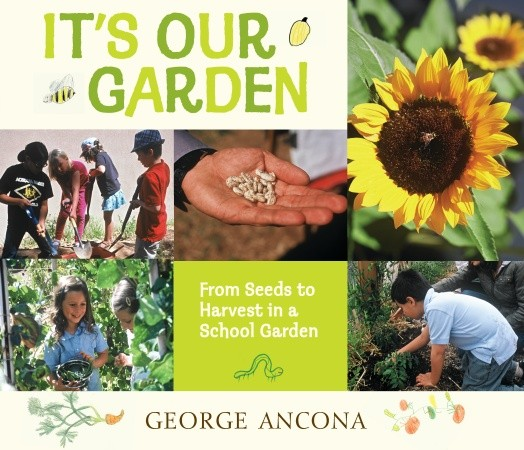 """""""It's Our Garden, From Seeds to Harvest in a School Garden"""" by George Ancona, published by Candlewick Press"""